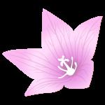 s_f_flower300